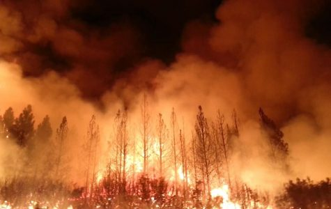 Wildfires strike California