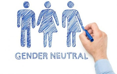 Gender neutrality creates controversy