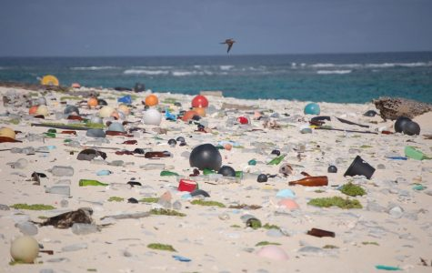 Plastic pollutes oceans across the world