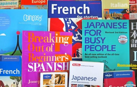 Learn Language for Travel Fast   The Invisible Tourist
